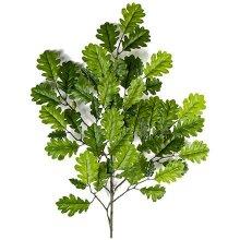 Ветки, листья, корни, коряги